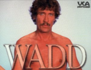 WADD - THE LIFE AND TIMES OF JOHN C. HOLMES