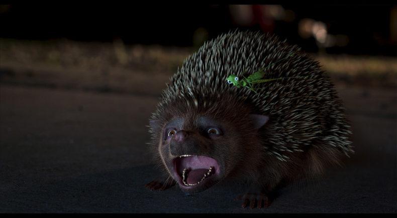 Prickly Jam